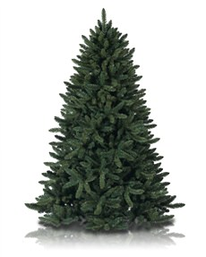 Balsam Spruce <span>|6'|Full 47"