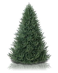 Oh Christmas Tree <span>|7.5'|Full 61"
