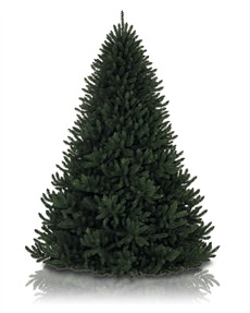 Alexander Fir&trade; Tree <span>|7.5'|Full 59"