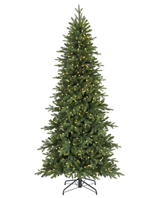 Kennedy Fir <span>|6.5'|Slim 40"