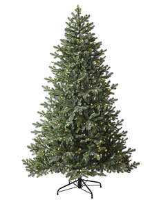 Luxe Balsam Spruce <span>|7'|Full 54"