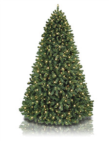 Pirouette Pine Rotating Tree <span>|7.5'|Full 56"
